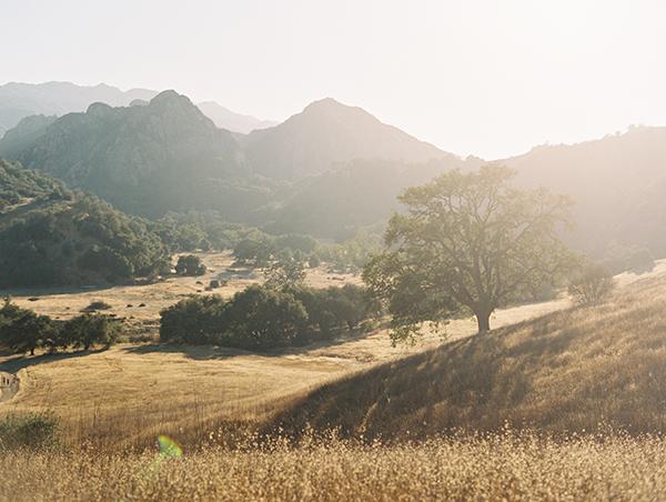 Esther Sun Photography